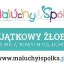 """Żłobek w Smolcu """"Maluchy i Spółka"""" – cudze chwalicie swego nie znacie cd."""