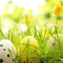 Zapraszamy na Kiermasz Wielkanocny do naszej szkoły 25 marca od godz. 8:00
