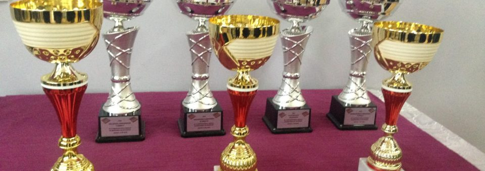 VI Otwarte Mistrzostwa Smolca w warcabach przyszły do historii