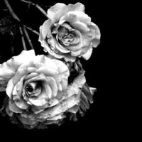 Żałoba na terenie naszej gminy w związku z tragicznym wypadkiem na przejeździe kolejowym – 22 czerwca