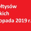 Wybory sołtysa oraz rad sołeckich już w listopadzie