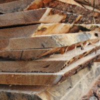 Drewnotar  Zakład Przerobu Drewna
